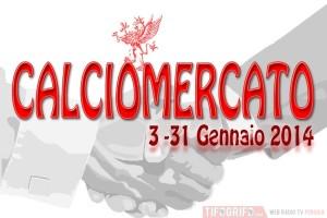 Calciomercato inverno 2014