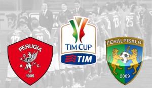 TIM CUP Perugia-feralpi schermata