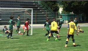 academy_cup